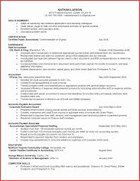 50 Lovely Resume Excel Format Resume Writing Tips Resume Writing
