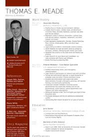 cv sample real cv examples resume samples visual cv free samples database