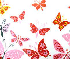 Cartoon Butterfly Hd Wallpaper