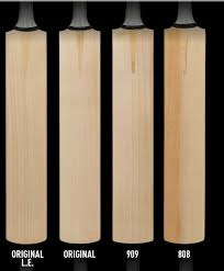 Details About Cricket Bat English Willow Neon Dxm 303 Tt Short Handle By Gunn Moore
