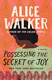 the color purple collection the color purple the temple of my possessing the secret of joy the color purple collection