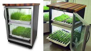 hydroponic herb garden. If You\u0027re Not An Avid Gardener, It\u0027s A Chore To Remember That Your Indoor Plants Need Regular Care And Watering. So Think Of This Urban Cultivator Like Hydroponic Herb Garden Y