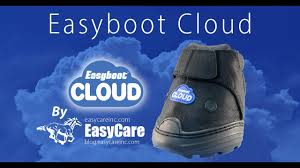 Easyboot Cloud Size Chart The Easyboot Cloud