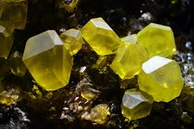 sulfur d12 wofür