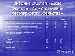 Презентация на тему Тема дипломной работы Разработка стратегии  7 Внешние стратегические
