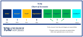 Chart Of Accounts Structure Chart Of Accounts Cloud Project