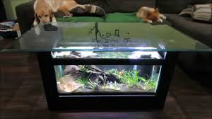 Coffee Table, Breathtaking Clear Rectangle Modern Glass Coffee Table  Aquarium Design Ideas To Improve Your