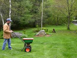 14 tips for fertilizing your lawn