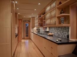 Eco Friendly Kitchen Cabinets Eco Friendly Kitchen Cabinets