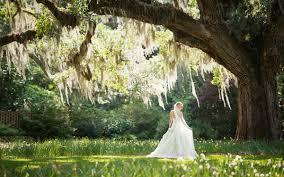 bridal under the oaks on her wedding day brookgreen gardens
