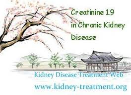 Creatinine 1 9 Diet Chart Creatinine 1 9 In Chronic Kidney Disease Is It Possible To
