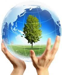 essay on environmental protection english is easy easy essay on environmental conservation