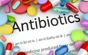 Image result for antibiotics