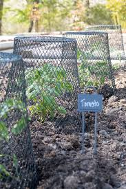 dollar garden hacks creative
