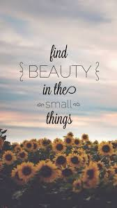 Finding Beauty Quotes Best of Find Beauty In The Small Things Quotes Pinterest Small Things