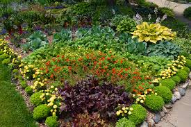 Small Picture How To Build A Rainbow Garden Shawna Coronado