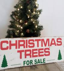 30 Unconventional Christmas Trees You Havenu0027t Seen Before  HongkiatWhat Kind Of Christmas Trees Are There