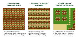 the advantages of using raised beds in