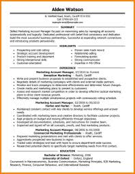 account manager resume technician resume account manager resume account manager marketing executive 2 jpg