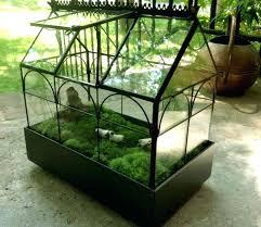 terrarium containers large glass terrarium containers