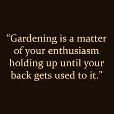 25+ Gardening Quotes | rapidlikes.com via Relatably.com