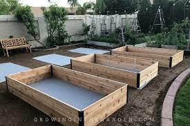 raised bed garden design tips growing