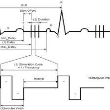 beat h walpoth hôpitaux universitaires de genève genève hug 1 schematic representation of stimulation procedere train of biphasic electrical impulses