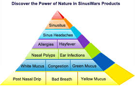 SinusWars UK - Natural remedies to treat sinus problems, infections ...