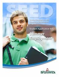 summer employment opportunities for students joint economic student employment experience development program