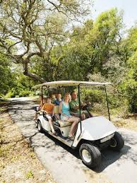 Image result for royalty free images golf carts mexico