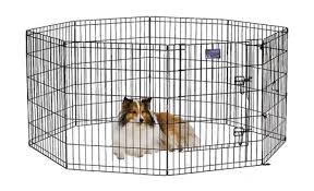 best dog playpen