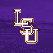 Image result for LSU Baseball