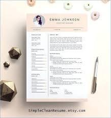 Resume Example Free Creative Resume Templates For Mac Resume