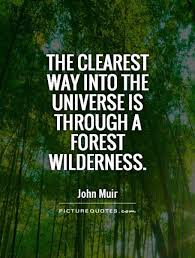 40 Famous Forest Quotes And Sayings Golfian Interesting Forest Quotes