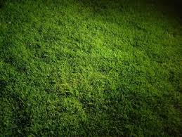 grass at night texture. Brilliant Texture Swedish Football Stadium  Grasslawntexturenight  With Grass At Night Texture Y