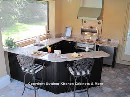 outdoor kitchen cabinets more collection also attractive kitchens tampa fl ideas premier creative valetta