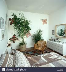Große Zimmerpflanzen Und Papier Schmetterlinge An Der Wand Auf Weiße