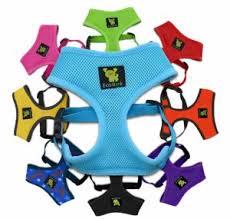 Ecobark Max Comfort And Control Dog Harness 12 99 Reg