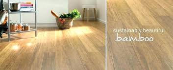cool costco bamboo flooring golden
