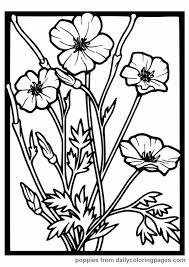 Small Picture 88 best Coloring pages images on Pinterest Coloring pages for