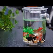 Bể Cá Mini Tích Hợp Đèn Led giá cạnh tranh