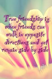 Meaningful Quotes About Friendship Enchanting True Friendship The 48 Best Meaningful Quotes