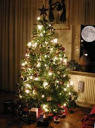 Best 25 Best Artificial Christmas Trees Ideas On Pinterest  Best Types Of Christmas Tree Lights