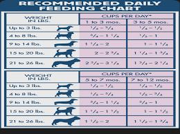 Blue Buffalo Basics Puppy Food Feeding Chart Foodfash