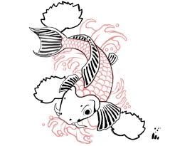 koi fish drawing step by step.  Step Pull_quote_centerKoi  Throughout Koi Fish Drawing Step By