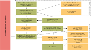 Biodiversity Classification Chart Flow Chart European Environment Agency