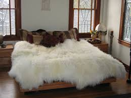 a genuine sheepskin rug can be a beautiful accessory to your home and interior decorating style many families who have invested in sheepskin rugs find that
