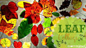 Fall Leaf Collage Sun Catcher - Preschool Activities and  PrintablesPreschool Activities and Printables