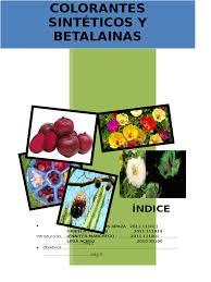 Colorantes Sinteticos Y Betalainas