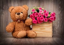 2560x1817 cute teddy bear wallpaper with pink roses in box hd wallpapers for